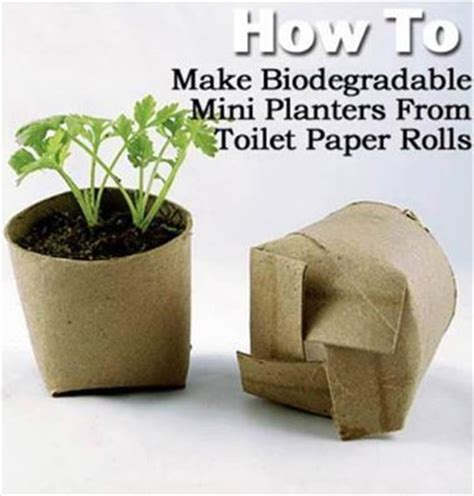 How To Make Paper Plant Pots - best 25 toilet paper rolls ideas on paper