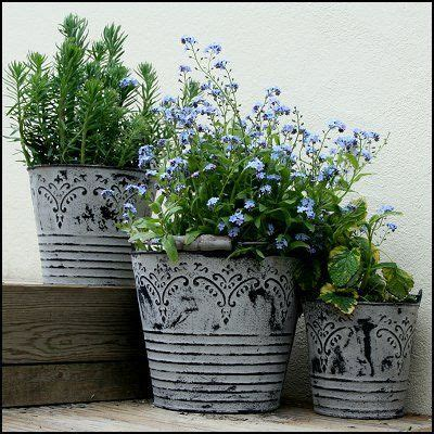 french style vintage metal bucket planters with handles