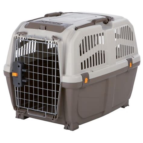Caisse Transport Chien Amazonbasics by Caisse De Transport Skudo Caisse De Transport Pour Chien Trixie Wanimo