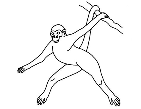 howler monkey coloring page image gallery howler monkey coloring page