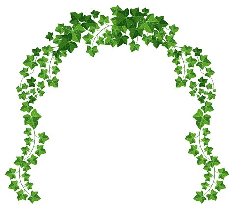format video vine vine arch png clipart picture gallery yopriceville