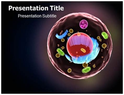 cell structure human powerpoint template ppt on cell