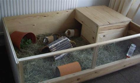 Guinea Pig Houses by Caring For Your Guinea Pig In Winter Preloved Uk