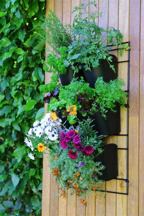 wall mounted planting kit holman industries