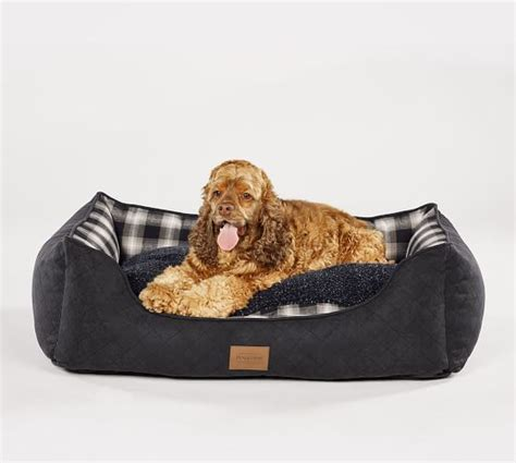 pet r for bed cuddler pet bed pottery barn
