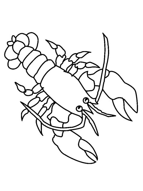 animal drawings coloring picture of lobster child coloring