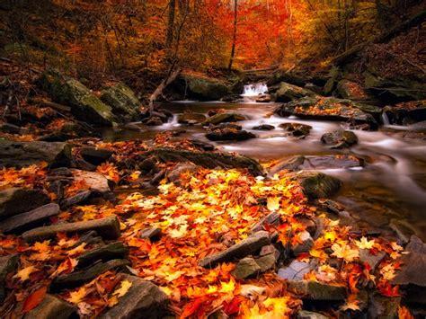 imagenes de paisajes otoño invierno im 225 genes de oto 241 o fondos de pantalla