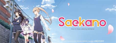 Saekano Saenai Heroine No Sodatekata 10 Japanese Light Novel saenai heroine no sodatekata review japanese media reviews