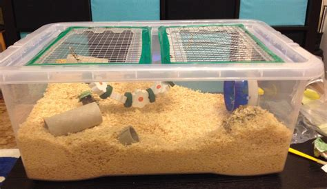 diy bin hamster cage diy bin cage home made hamster cage from a storage tub these can be made from any size tub and