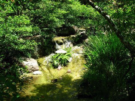 Japanese Garden Delray by Morikami Museum Japanese Gardens Delray Fl 057