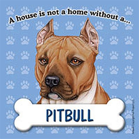 pitbull dog house pit bull dog magnet sign house is not a home brn