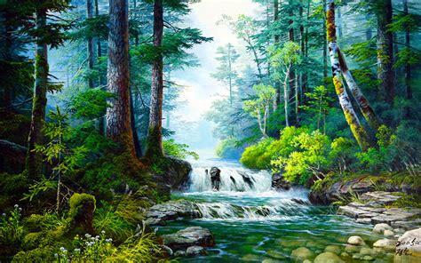 forest creek waterfall rocks wallpapers forest creek