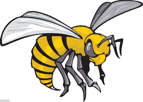 bee clipart wasps pencil and in color bee clipart wasps