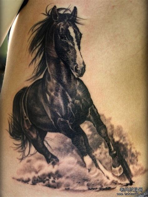 tattoo 3d horse 素描的图画图片 素描的图画图片下载