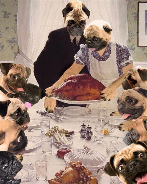 pug family pug family dinner for