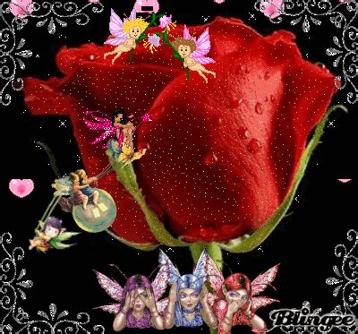 imagenes de flores en movimiento imagenes de rosas con movimiento para mi novio 08