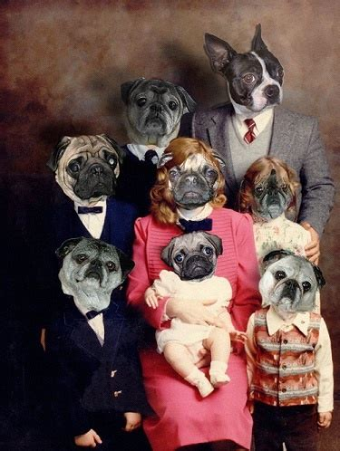pugs as family pets 132 best pugs photoshopped lol images on pug pugs and yoshi