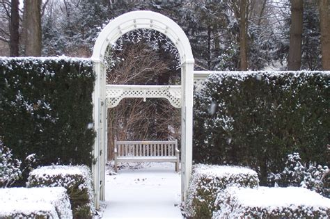 youngstown  rose garden  winter   photo