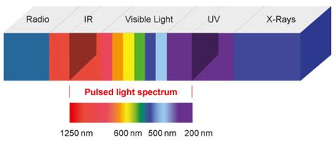 Pulsed Light by Emission Spectrum Family Feud