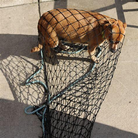 animal capture throw nets