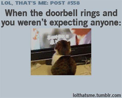 Lol Memes Funny - gif lol funny funny gif lol gif relatable lol so true lol