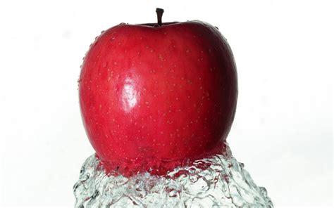 wallpaper apple red red apple wallpaper 129942