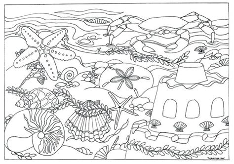 coloring pages for adults beach items similar to beach seashells scene coloring page