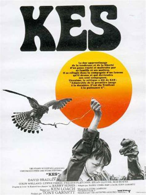 themes in the film kes kes review trailer teaser poster dvd blu ray