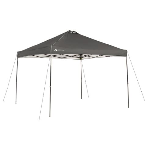 10 x 10 replacement canopy canopy design astonishing coleman 10x10 replacement