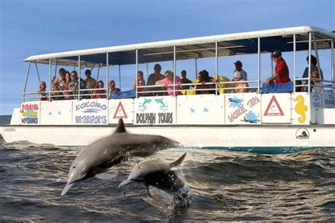 duck nc boat tours dolphin tours in the outer banks dolphin encounters