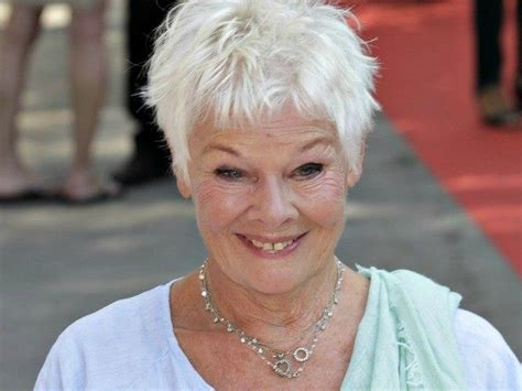 what products to use to get judi dench hair judi dench game google family feud