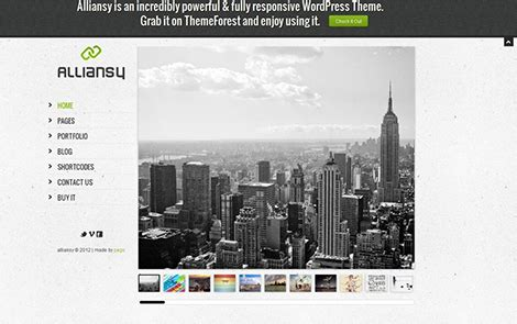 themes slideshow wordpress alliansy responsive one slide wordpress theme mukkamu