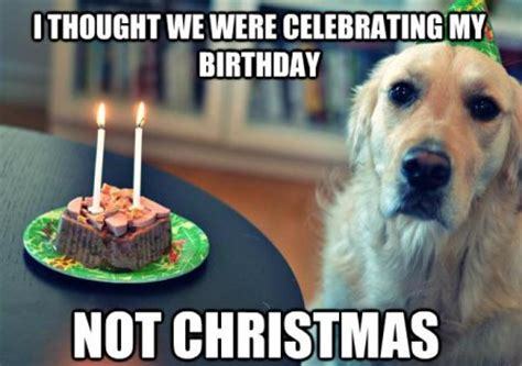 top funny christmas jesus birthday meme happybirthday