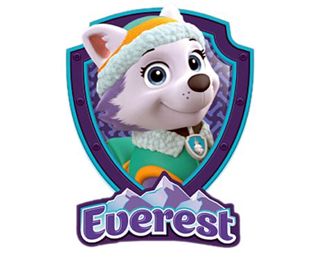 paw patrol everest paw patrol paw patrol characters and paw patrol birthday