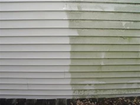 how to remove mold from house siding remove mold from siding of house 28 images how to remove mold from vinyl siding
