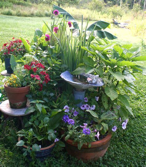 compost container garden container gardening
