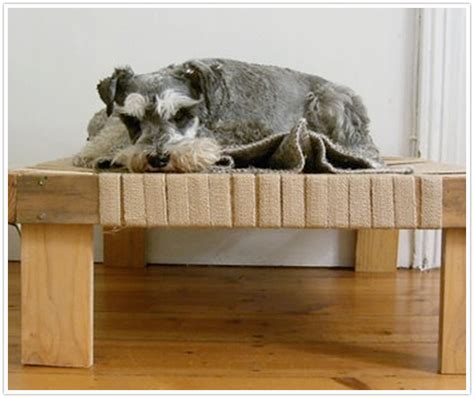 make your own dog bed transformed pet project camille styles