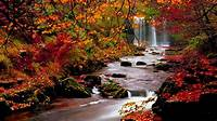 Fall Backgrounds For Desktop Free Download