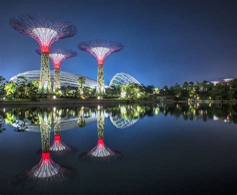 singapore s gardens by the bay feature the world s largest