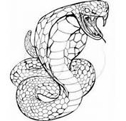 Cobra Coloring Pages For Kids &gt&gt Disney