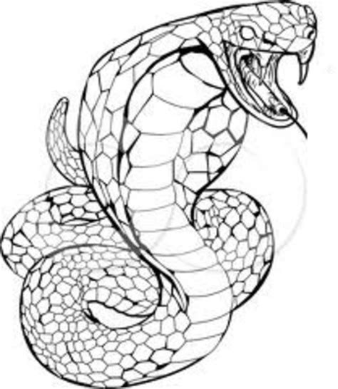 printable coloring page king cobra cobra coloring pages for kids gt gt disney coloring pages