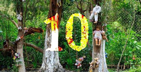 el bosque de los 10 datos inquietantes sobre el bosque de los suicidios de jap 243 n