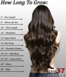 how much does black hair grow in a month 25 best ideas about hair length chart on pinterest long