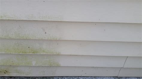 how to clean vinyl siding on house how to clean mildew off vinyl siding outdoor room ideas