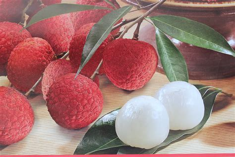 lychee fruit 100 lychee fruit warning for lychee lovers ल च क फ
