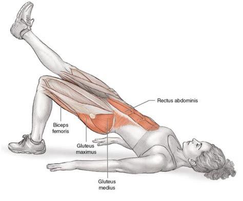 learn this exercise bridge with leg kick human kinetics