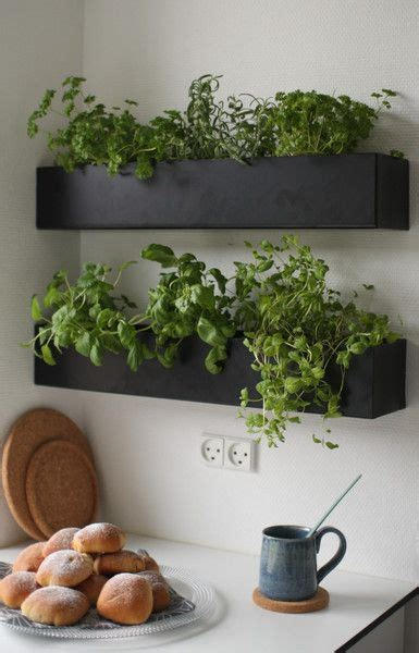 herbs on wall 25 best ideas about wall planters on pinterest diy wallart planter accessories and framed