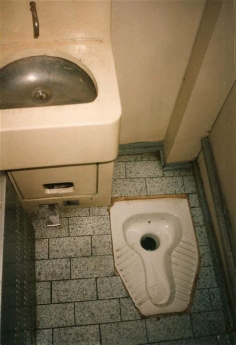 bathrooms in egypt egyptian toilets toilets of the world