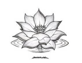 Draw A Lotus Flower Lotus Flower Drawings For Tattoos Lotus Flower Drawing