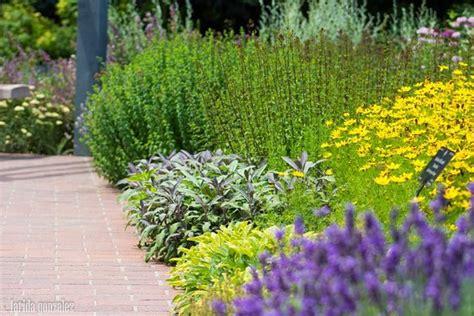 herb garden ashwiniahujaonline s weblog italian herb garden picture of denver botanic gardens